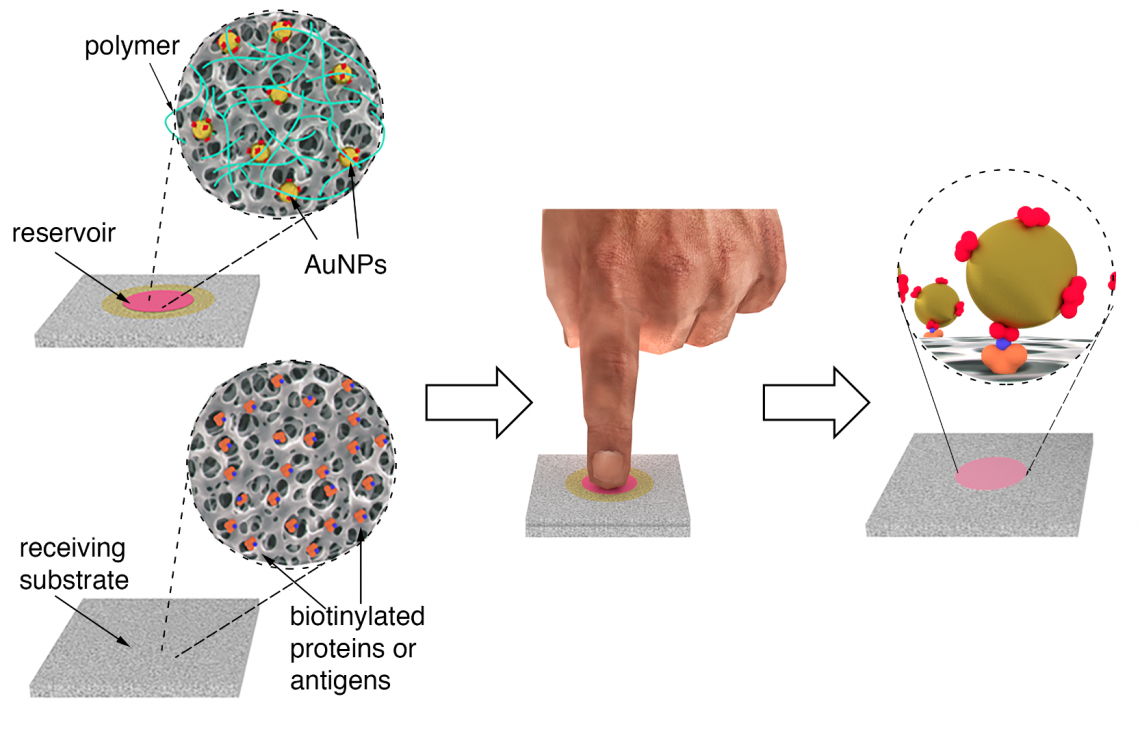 Diagram of nanoparticle reservoirs